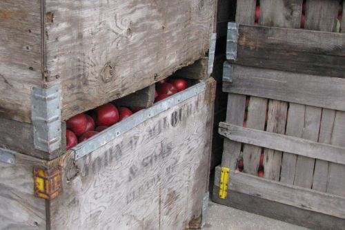 apple-crates