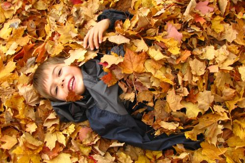 brian-lying-in-leaves