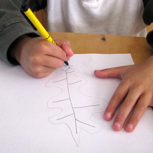 draw-a-leaf