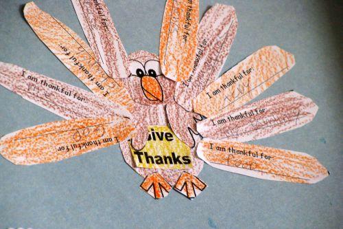 give-thanks-turkeys
