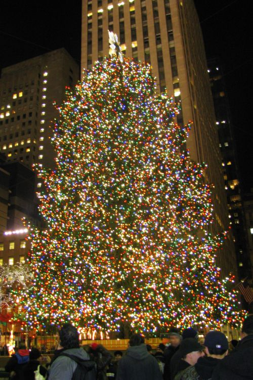 tree-at-rockefeller-center