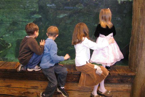 at-the-fish-tank