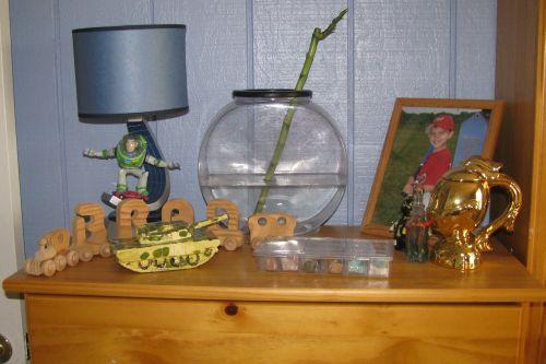 brads-shelf