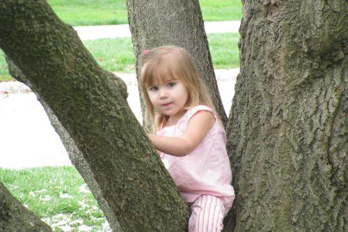 brea-in-tree