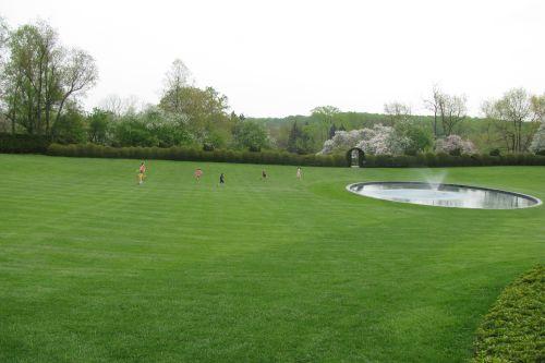 children-running-on-lawn