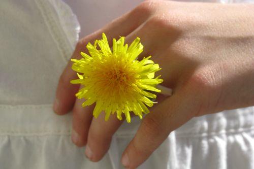 dandelion-ring