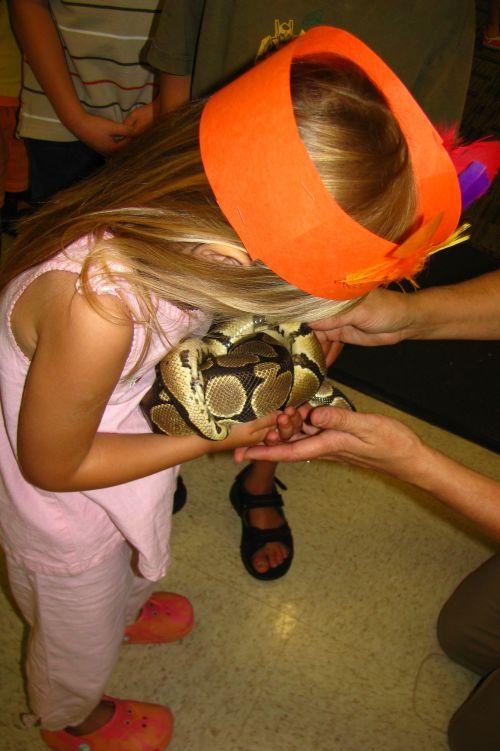 brea holding python