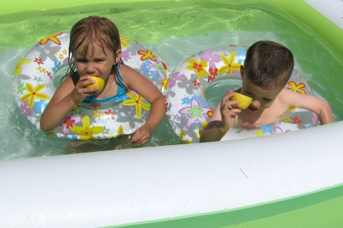 lemon swimming