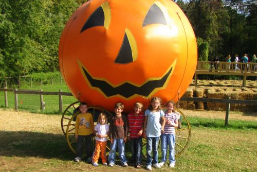 group at pumpkin